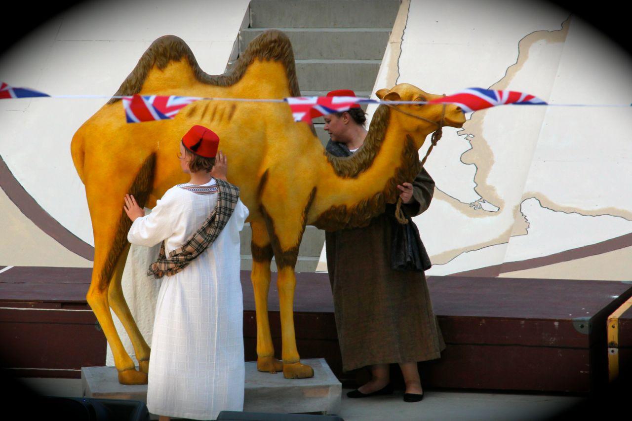 Kamel, Sommerspil 2014