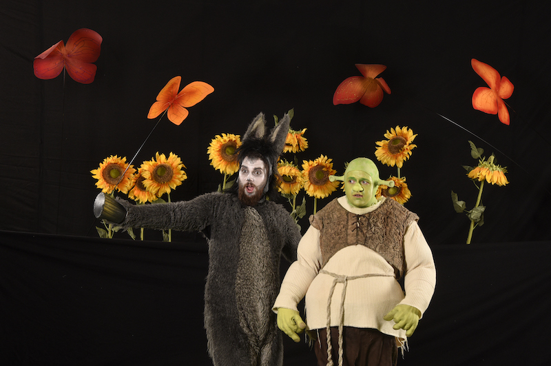 Shrek og æsel - Skansespillet 2017 SHREK